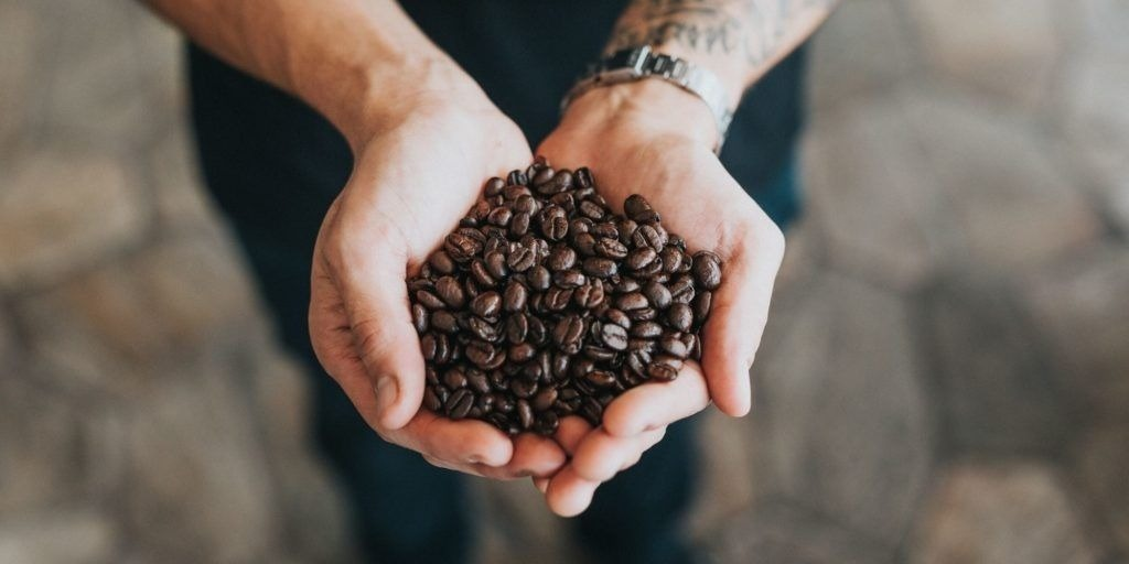 person holding roasted coffee beans in hands