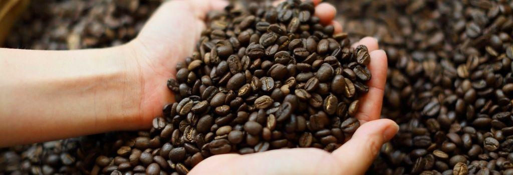 fresh coffee, coffee beans, whole bean coffee