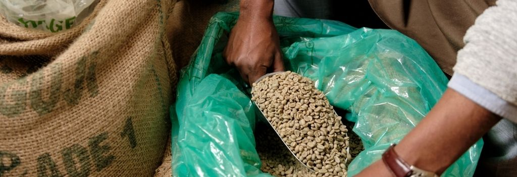 source coffee beans, specialty coffee